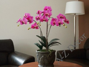 Artificial Phalaenopsis in ceramic pot 77cm [AZ02019]