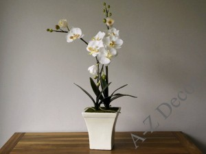 Artificial white Phalaen in ceramic pot  [AZ00326]