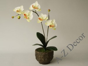 Articifial phalaenopsis orchid in ceramic pot 44cm [AZ02021]
